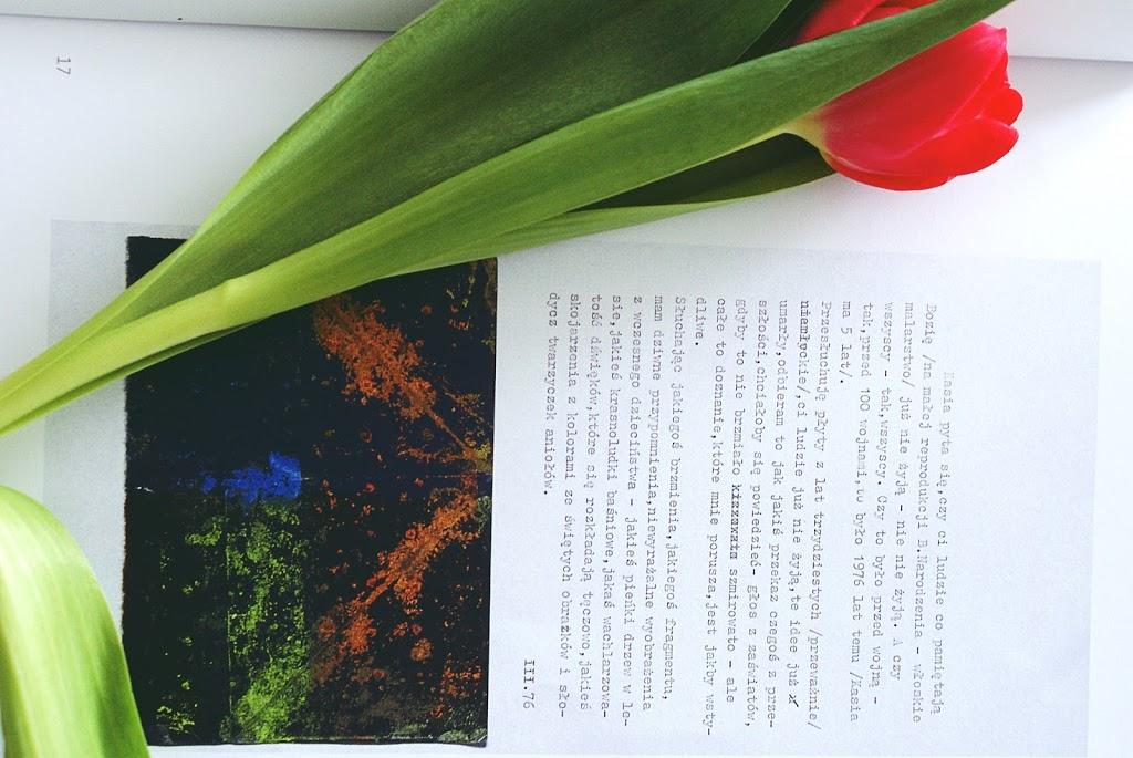 Książka; tulipan, serendipity, kasia lamassu